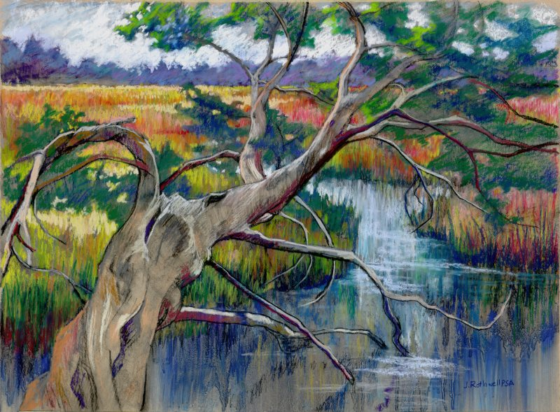 http://junkoonorothwell.com/Landscapes/Savannah%20Marsh,%20Pastel,%2013%20x%2018.jpg